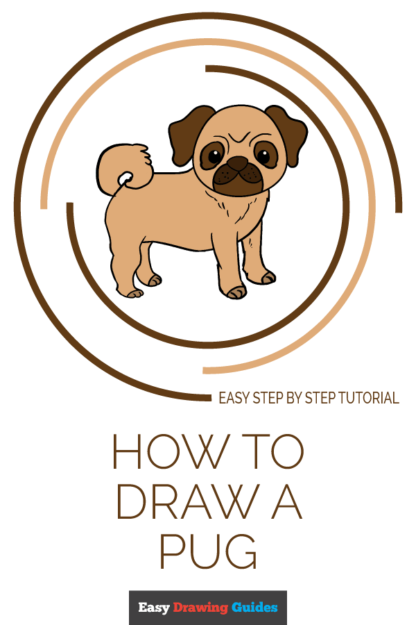 How to Draw Pug | Share to Pinterest