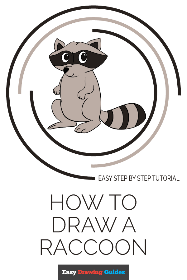 How to Draw Raccoon | Share to Pinterest