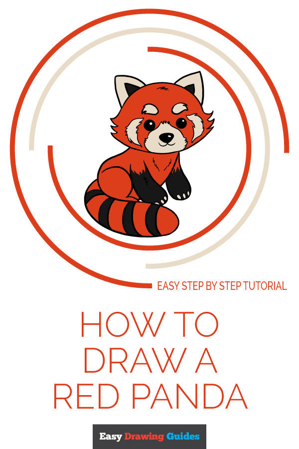 How to Draw Red Panda | Share to Pinterest