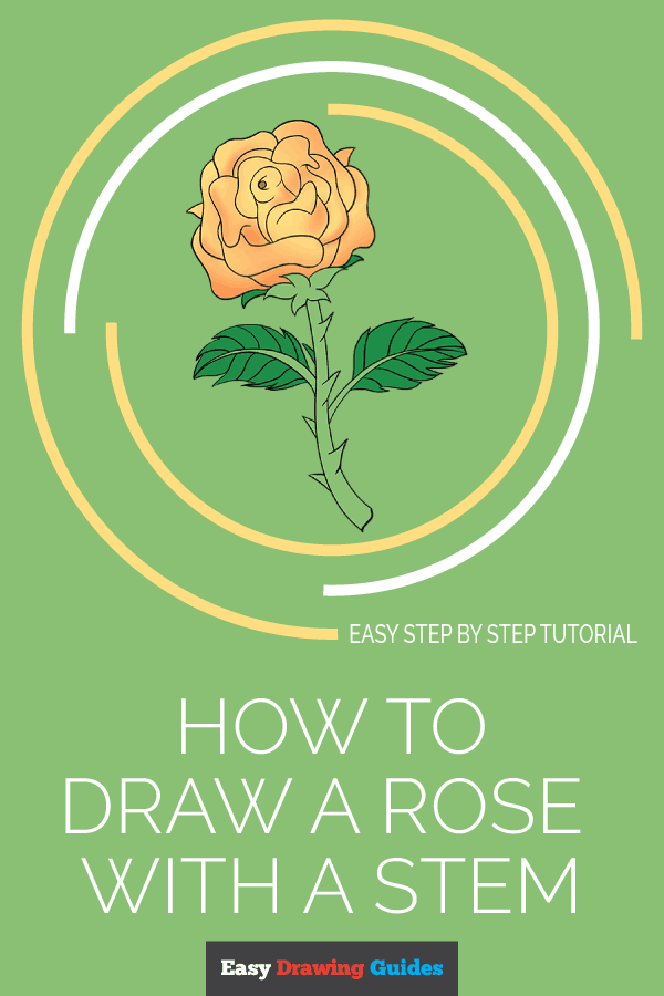 How to Draw Rose with a Stem | Share to Pinterest
