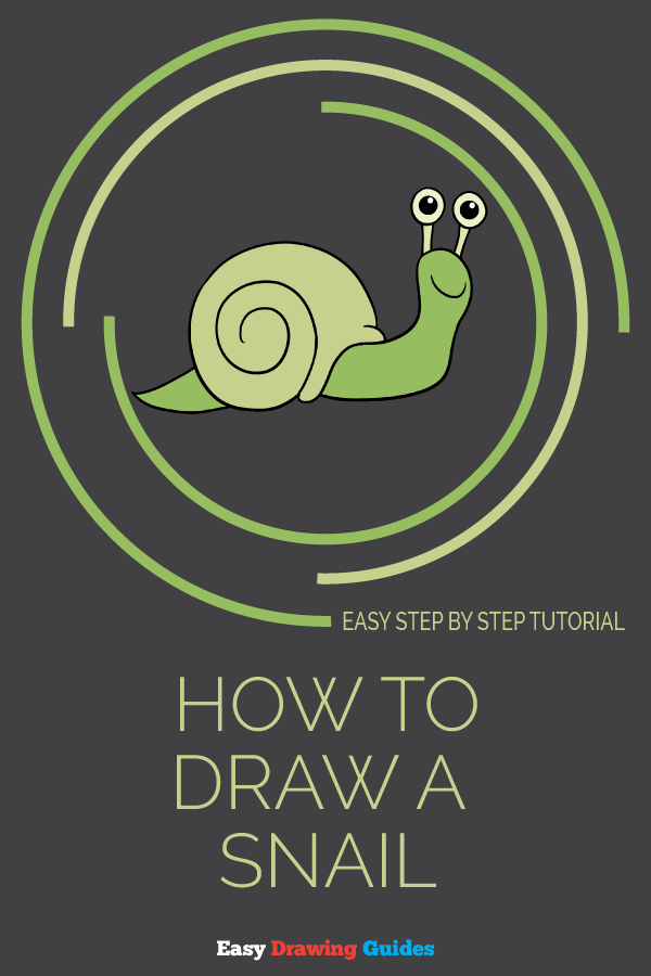 How to Draw a Snail | Share to Pinterest