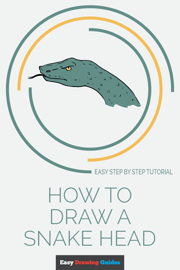 How to Draw Snake Head | Share to Pinterest