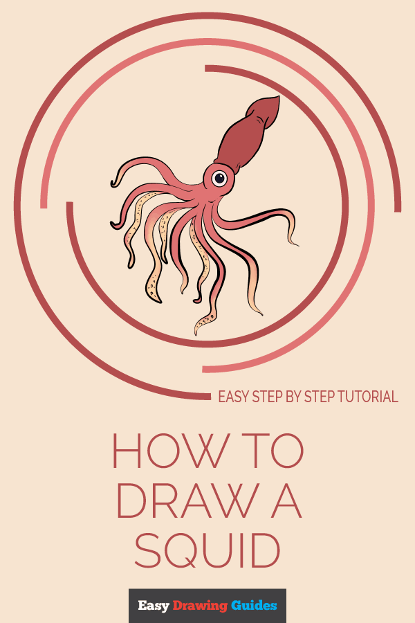 How to Draw Squid | Share to Pinterest