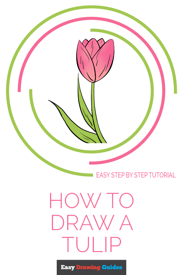 How to Draw Tulip | Share to Pinterest