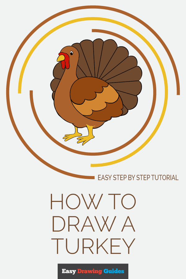 How to Draw a Turkey | Share to Pinterest