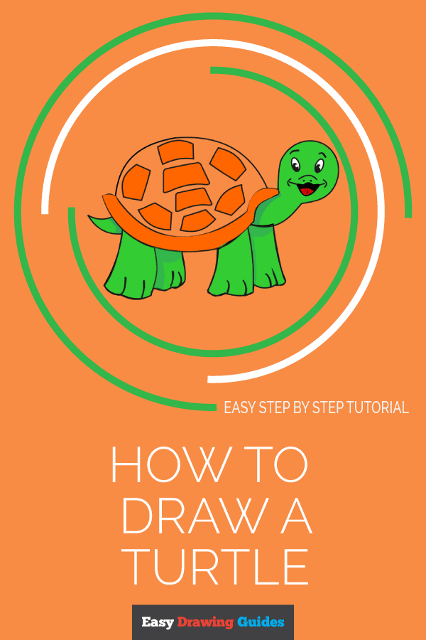 How to Draw a Turtle | Share to Pinterest