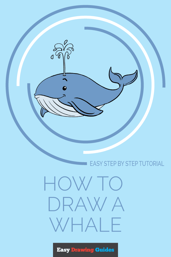 How to Draw Whale | Share to Pinterest