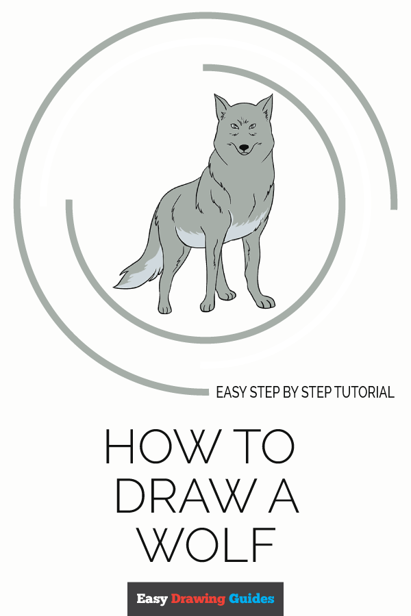 How to Draw Wolf | Share to Pinterest