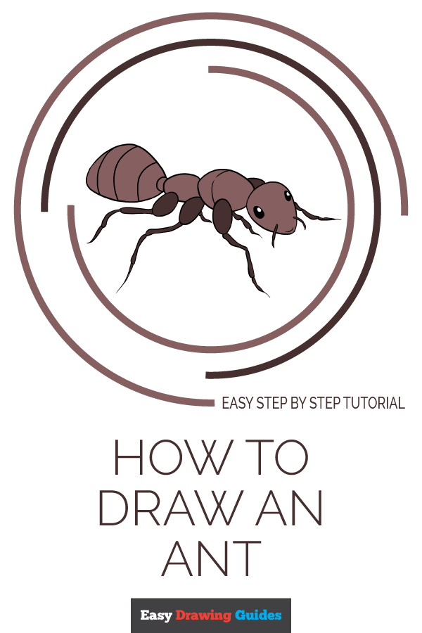How to Draw Ant | Share to Pinterest