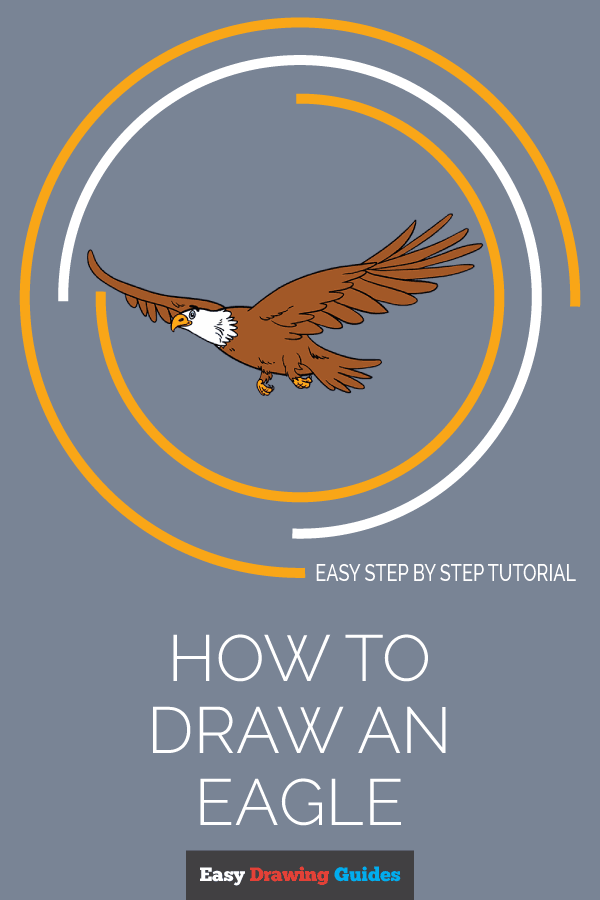 How to Draw an Eagle | Share to Pinterest