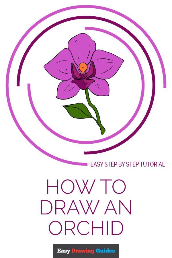 How to Draw Orchid | Share to Pinterest