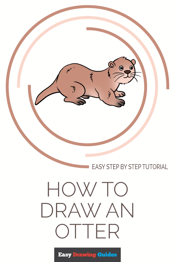 How to Draw Otter | Share to Pinterest