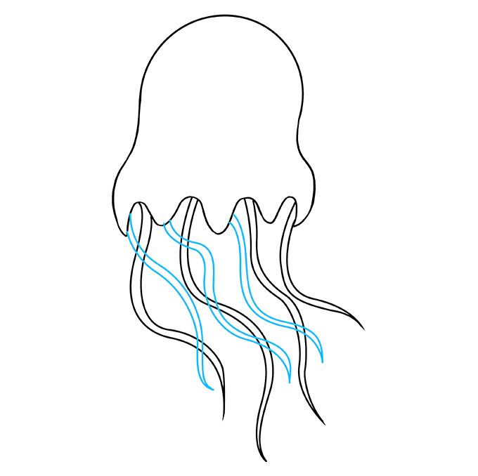 How to Draw Jellyfish: Step 6