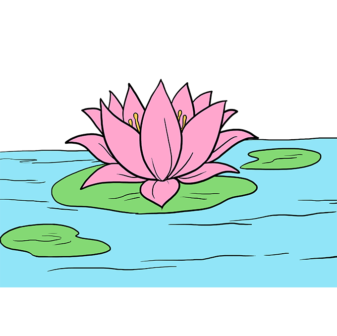How to Draw Lotus Flower: Step 10