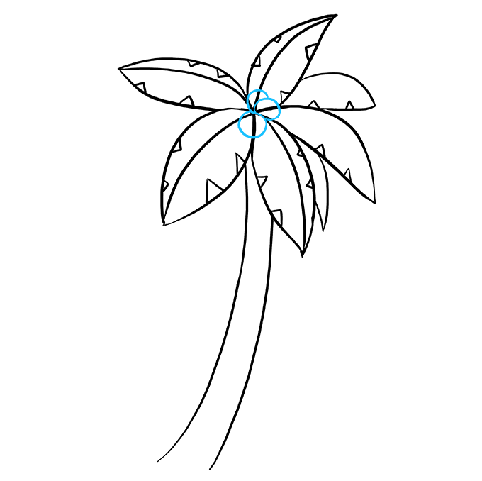 How to Draw Palm Tree: Step 7