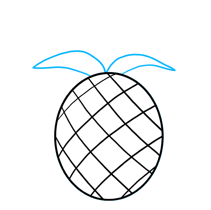 How to Draw Pineapple: Step 4