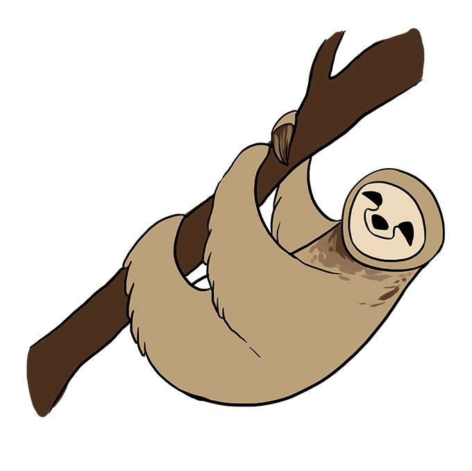 How to Draw Sloth: Step 10