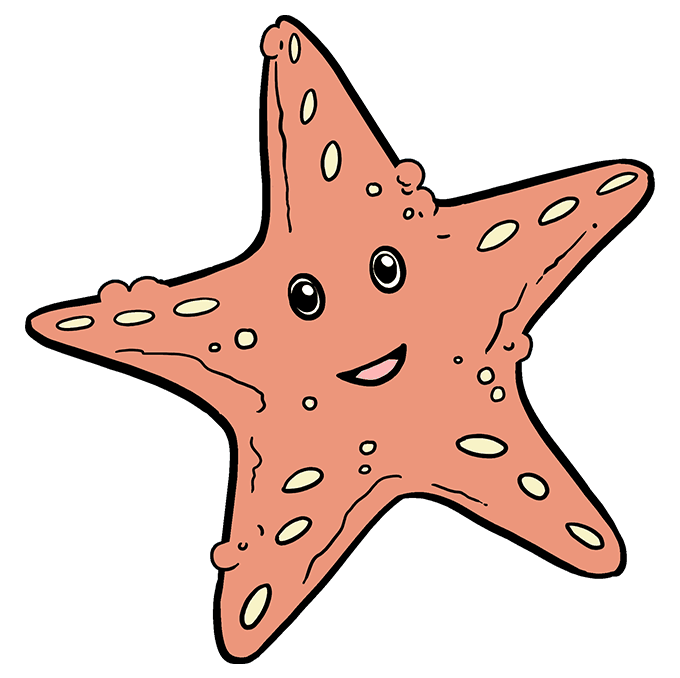 How to Draw Cute Starfish: Step 10
