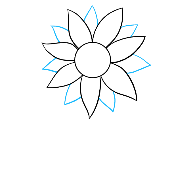 How to Draw Sunflower: Step 3