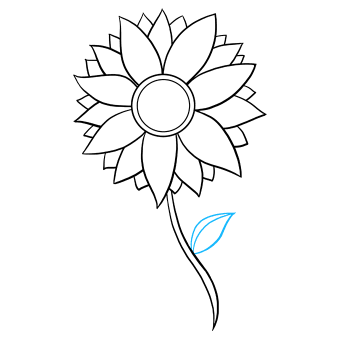 How to Draw Sunflower: Step 7