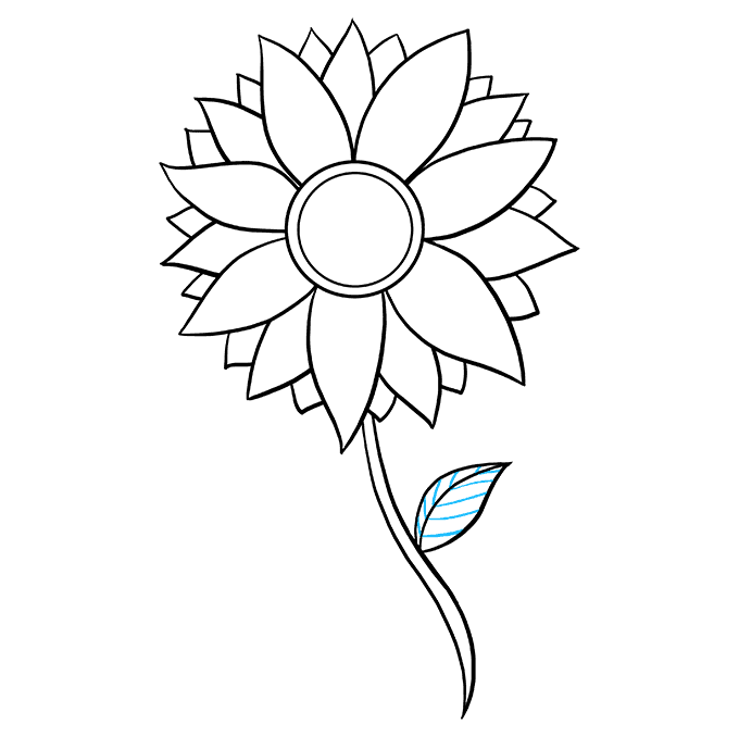 How to Draw Sunflower: Step 8