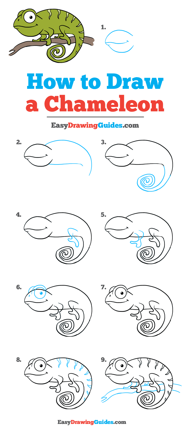 How to Draw a Chameleon: Step by Step Tutorial