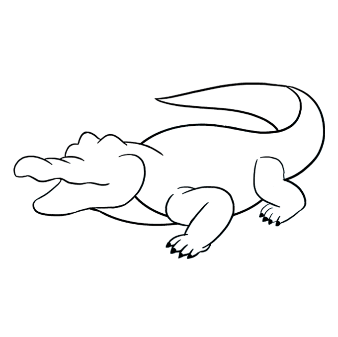 How to Draw Alligator: Step 7