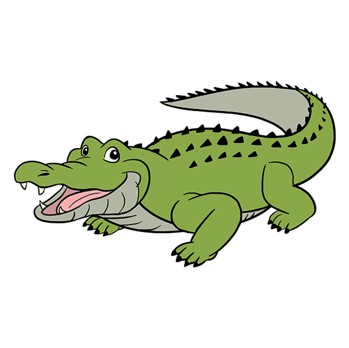 How to Draw Alligator: Step 10