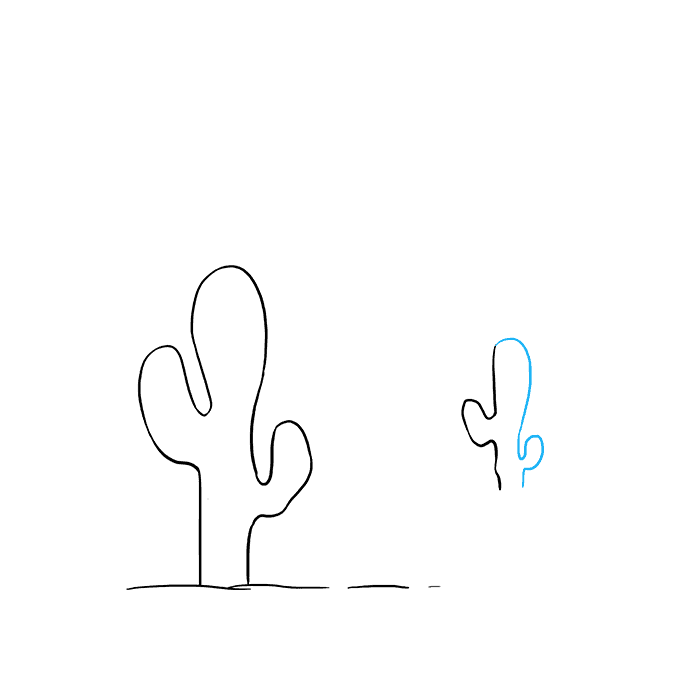 How to Draw Cactus: Step 5