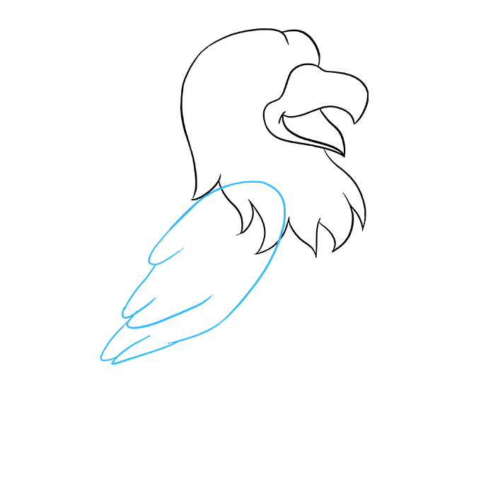 How to Draw Cartoon Hawk: Step 4