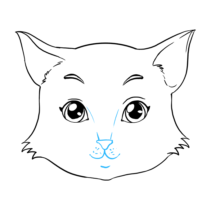 How to Draw a Cat Face Step 08