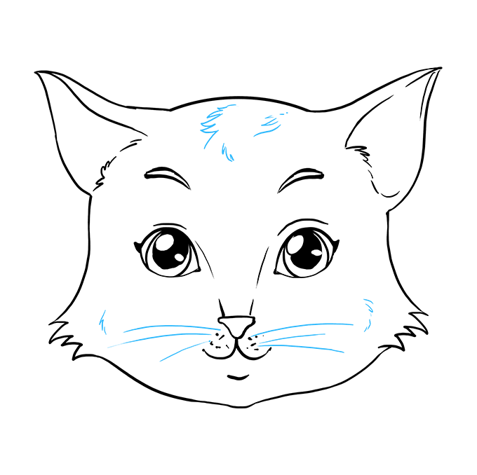 How to Draw a Cat Face Step 09