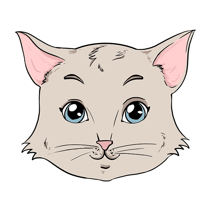 How to Draw Cat Face: Step 10