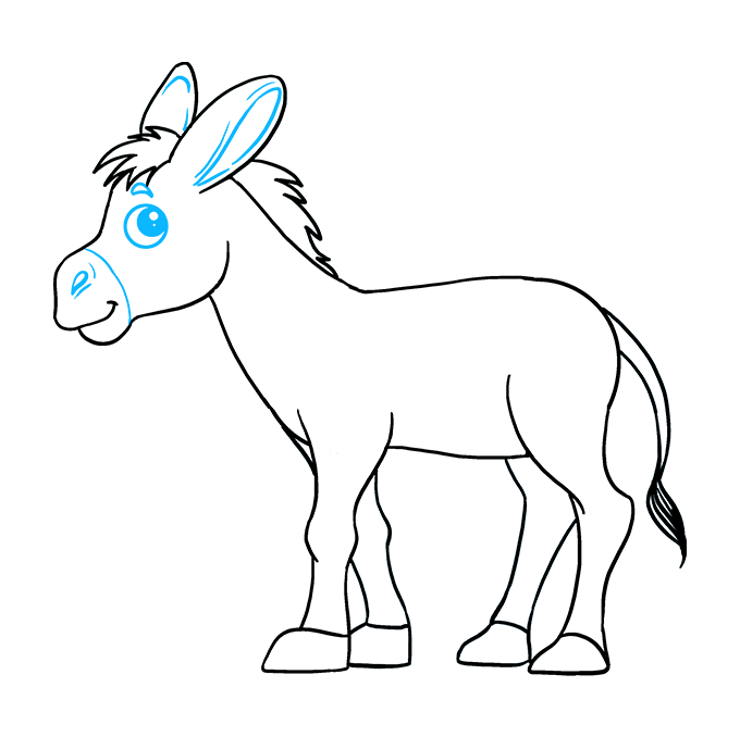How to Draw Donkey: Step 9
