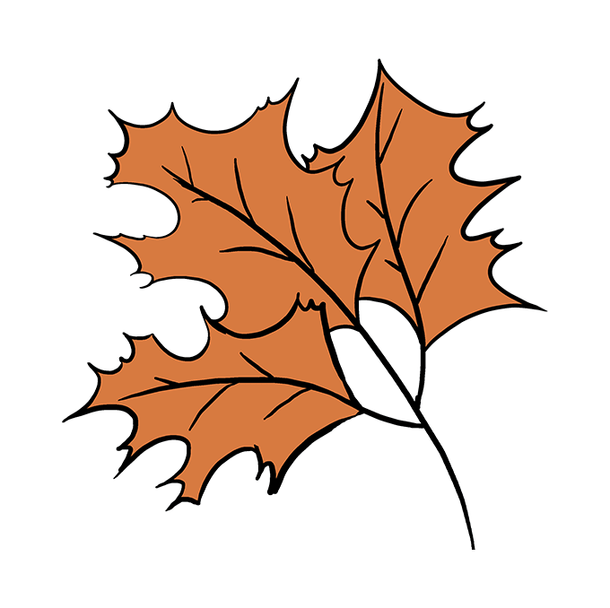 How to Draw a Fall Oak Leaves Step 10