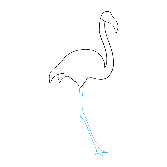 How to Draw Flamingo: Step 6
