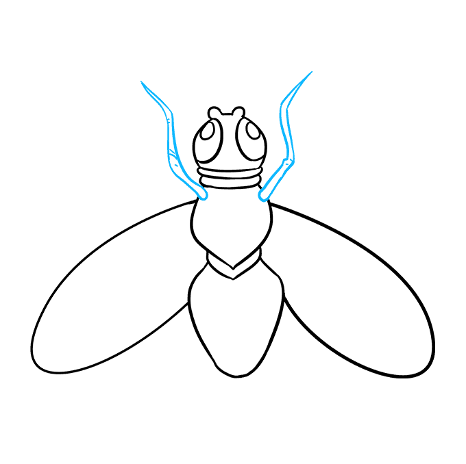 How to Draw Fly: Step 7