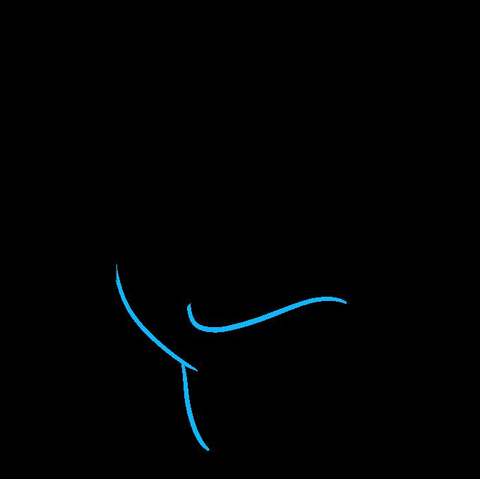 How to Draw Hammerhead Shark: Step 4