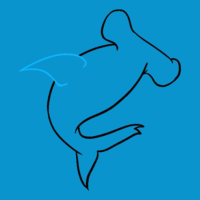 How to Draw Hammerhead Shark: Step 6