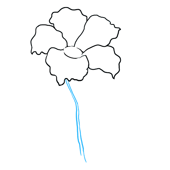 How to Draw Hibiscus Step 05