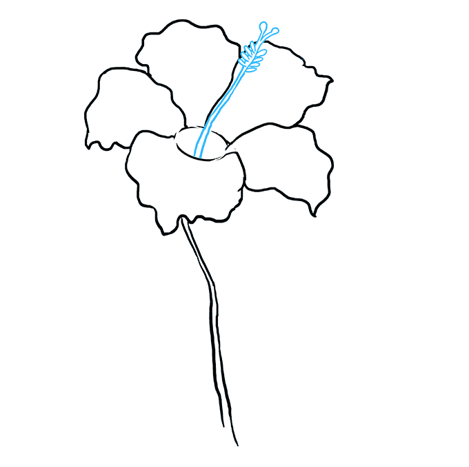 How to Draw Hibiscus: Step 6