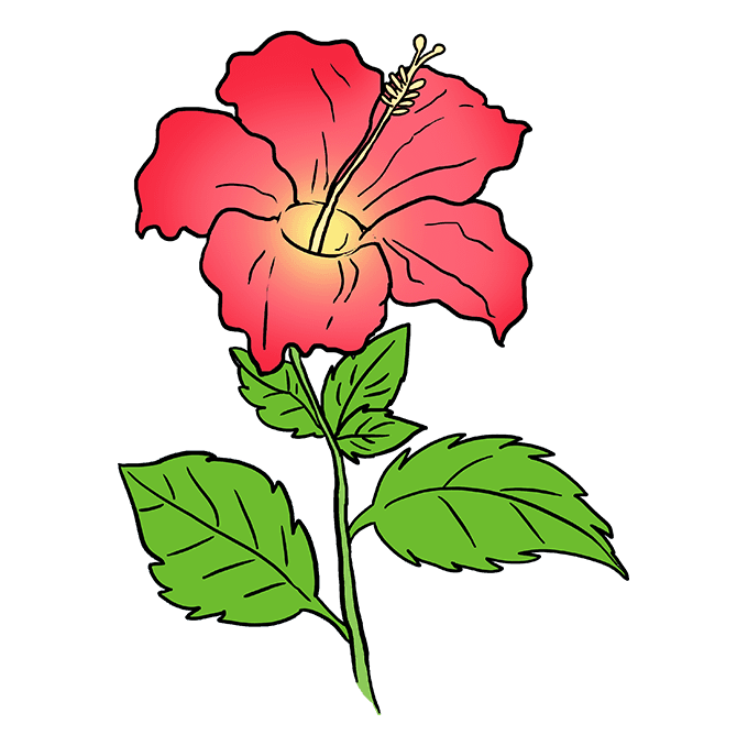 How to Draw Hibiscus: Step 10