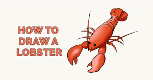 How to Draw a Lobster Featured Image