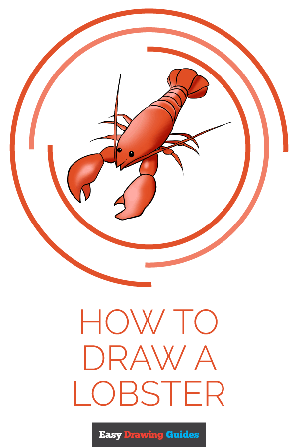 How to Draw Lobster | Share to Pinterest