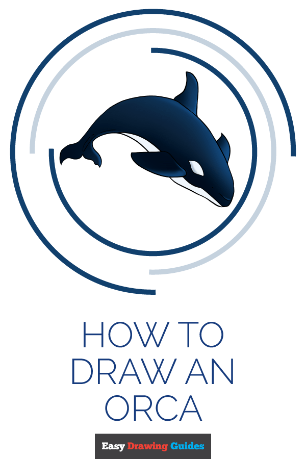 How to Draw Orca | Share to Pinterest
