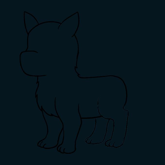 How to Draw Husky: Step 7