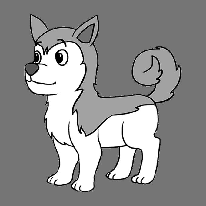 How to Draw Husky: Step 10
