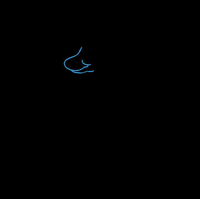 How to Draw a Kangaroo Step 06