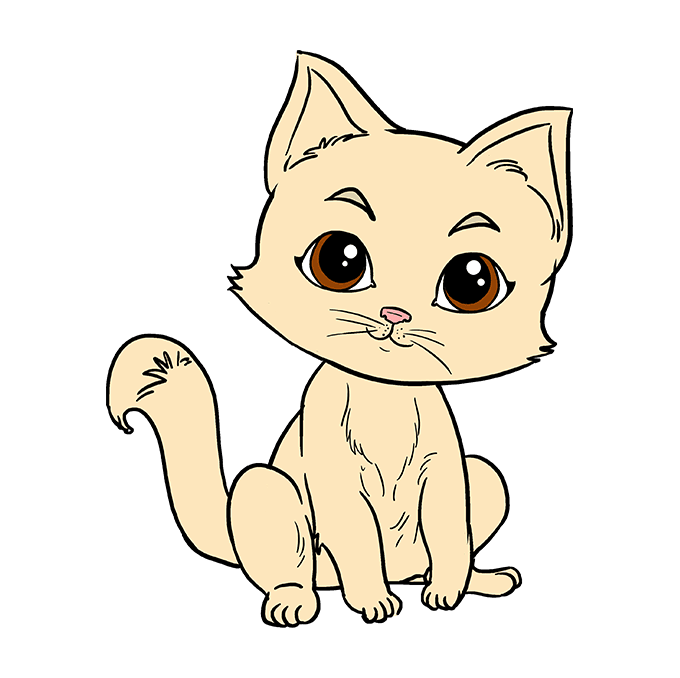 How to Draw Kitten: Step 10