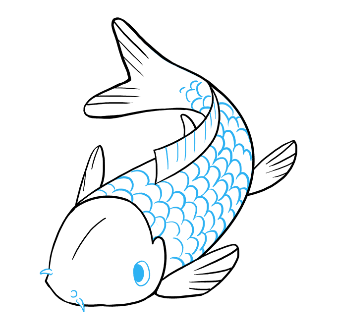 How to Draw Koi Fish: Step 9